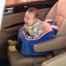 Animal Baby Sit