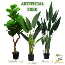 [SELLING FAST] Pokok Hiasan Viral Banana / Skybird / Fiddle Fig
