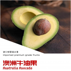 Australia Avocado 3nos/pack