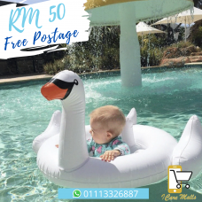 Flamingo & Swan Swimming Ring