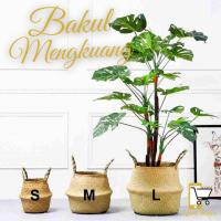 Bakul Mengkuang