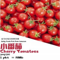 Cherry Tomatoes 300g+-/pkt