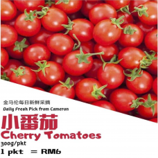 Cherry Tomatoes 300g+-/pkt