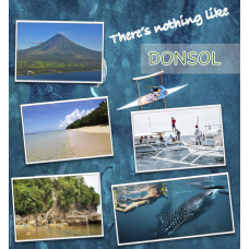 Donsol Philippines Tour