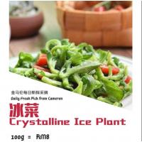 Crystalline Ice Plant 100g+-/pack
