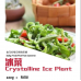 Crystalline Ice Plant 100g+-/pack