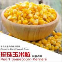 Sweet Corn Kernels 200g+-/box