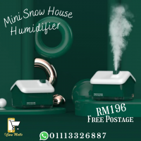 Mini Snow House Humidifier