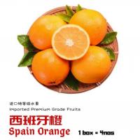 Spain Orange 4nos/pack