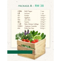 PACKAGE A ( 9 types of fresh vegetables)