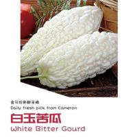 White Bitter Gourd 600g+-