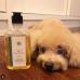 Virgin Coconut Pet Shampoo - Anti Flea & Tick