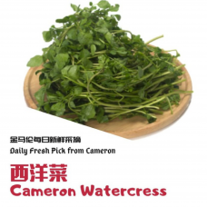 Cameron Watercress 300g+-/pkt