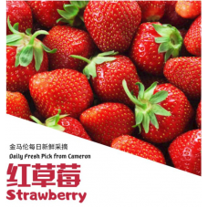 Cameron Highlands Red Strawberry 500g+- (1box)